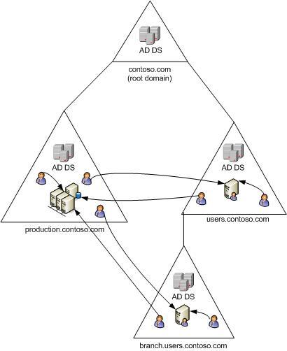 single forest domain model